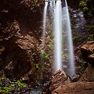 Queen Mary Falls II by Ryan O'Donoghue