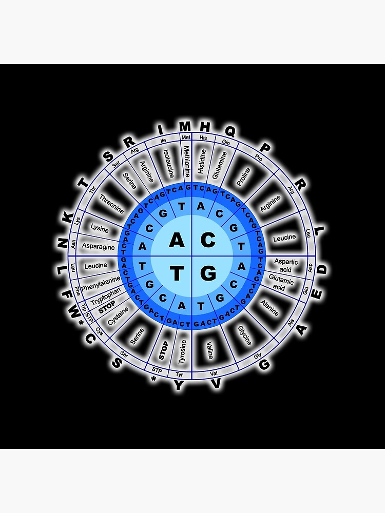 DNA. Genetic Code, Circle, Gene, Codon, Amino Acid. On Black. by TOMSREDBUBBLE