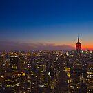 Goodnight Manhattan by Steve Edwards