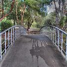 A Park Bridge. by Eve Parry