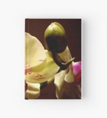 ORCHID - phalaenopsis II   ^ Hardcover Journal