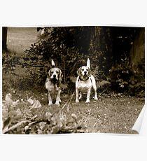 Otis&TIna Poster