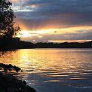 river de oro ... by gail woodbury