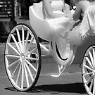 Wedding Carriage by Patrick Robertson