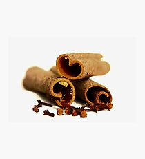 Cinnamon Sticks Photographic Print