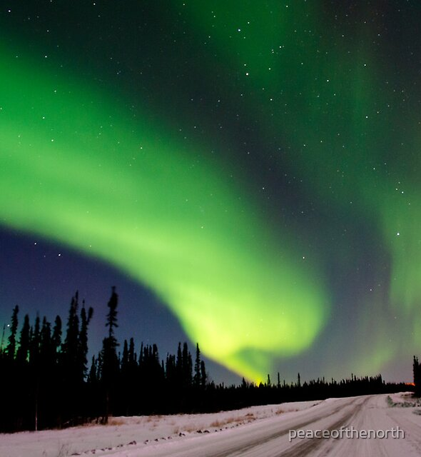 The Auroras Sky by peaceofthenorth