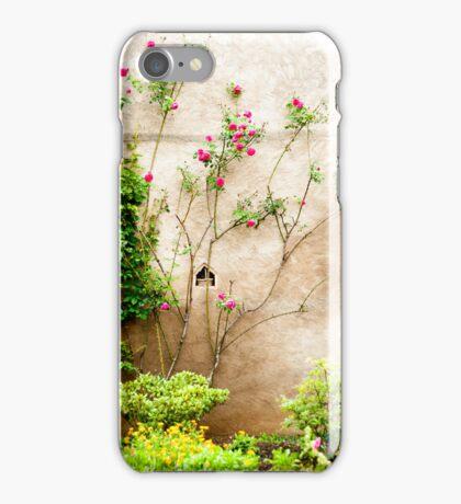 Old World 1 iPhone Case/Skin