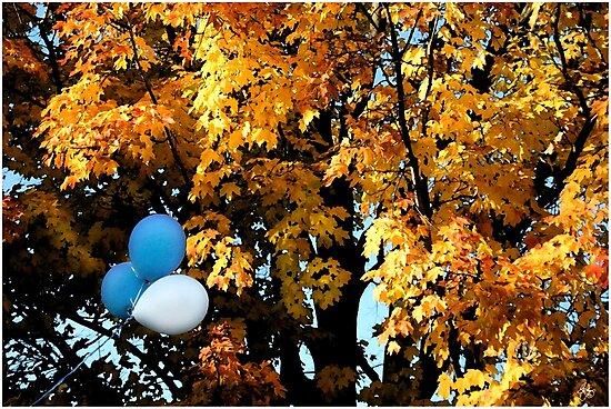 Autumn Celebration by Wayne King