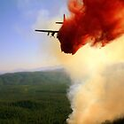 Air Tanker 44 dropping retardant on the eastern edge of the Promontory Fire. by Eric  Neitzel