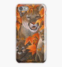 Mountain Colours iPhone Case/Skin