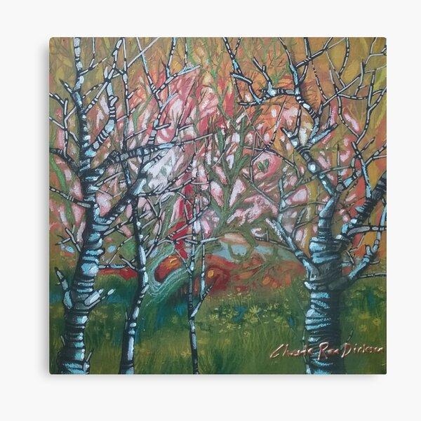 Moody Woodlands Canvas Print