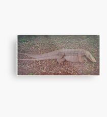 Mating. Metal Print