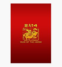 Chinese New Year of The Horse 2014 Photographic Print