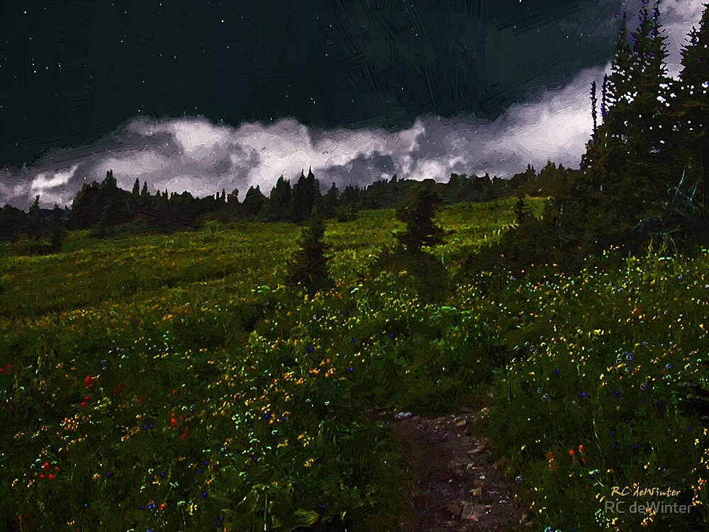 Heading Home Through the Meadow by RC deWinter