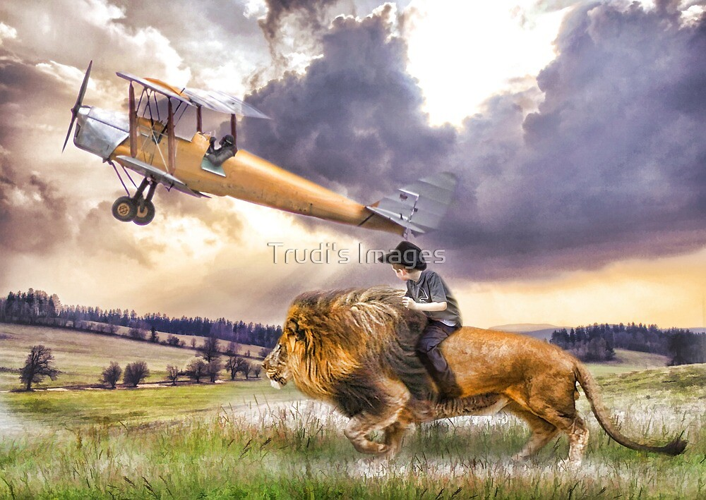 Flight of Fancy by Trudi's Images