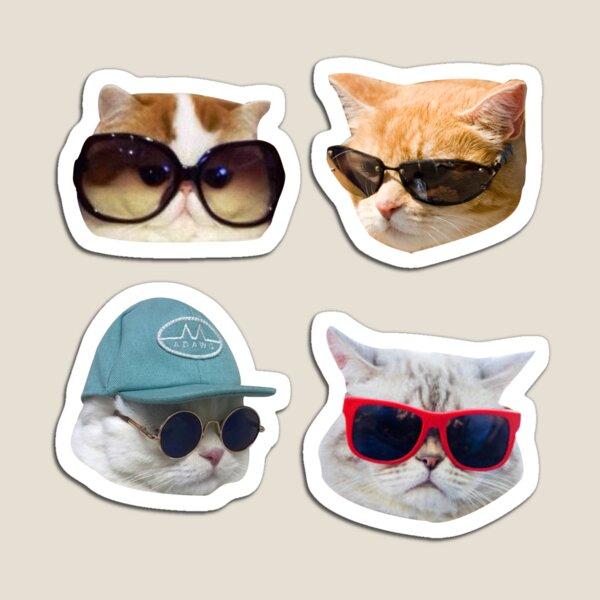 Paquete de pegatinas de gatos con gafas Imán