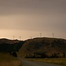 The power of wind - White Hill - South Island - New Zealand by Paul Davis