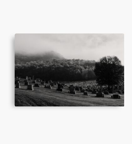Resting Place Canvas Print