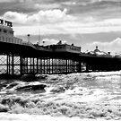 Brighton Pier by andyw