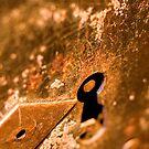 Rusty old lock by Mario Brandao