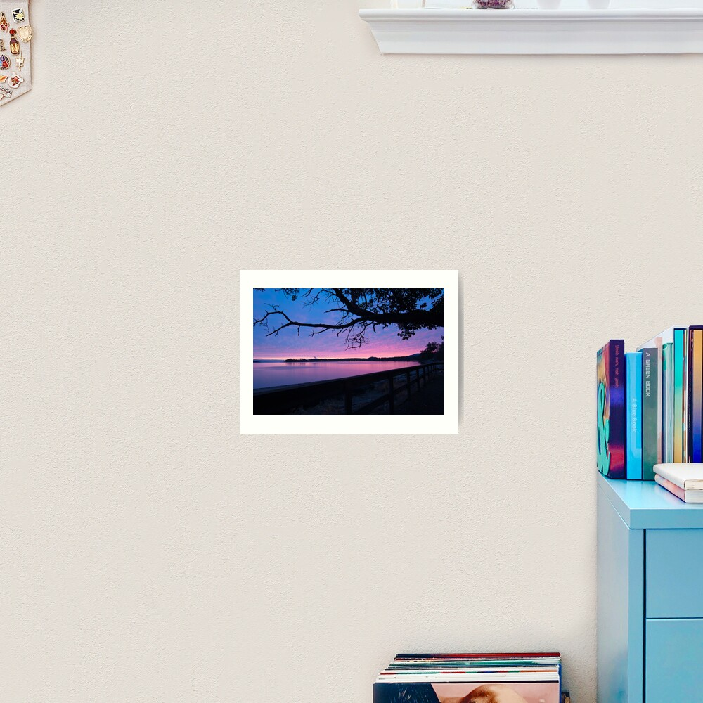 Arbutus over Bay Art Print