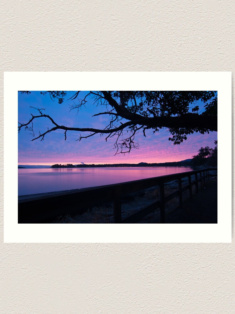 Alternate view of Arbutus over Bay Art Print