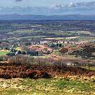 East Central Scotland by Tom Gomez