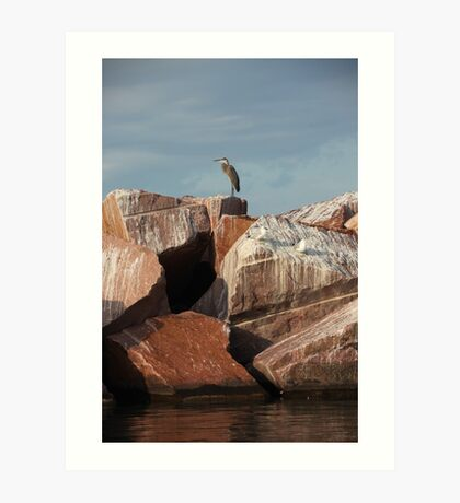 Great Blue Heron on Red Rock Art Print