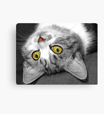 The Eyes Have It !! Canvas Print