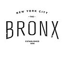 The Bronx, NYC by typeo