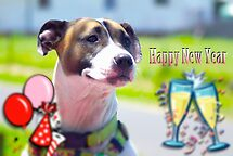 Happy New Year from Lotti by waxyfrog