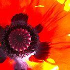Hopp'n Poppy by MarianBendeth