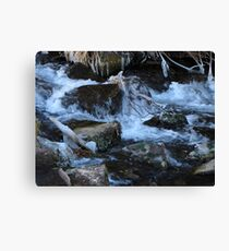It Is COLD!! Canvas Print