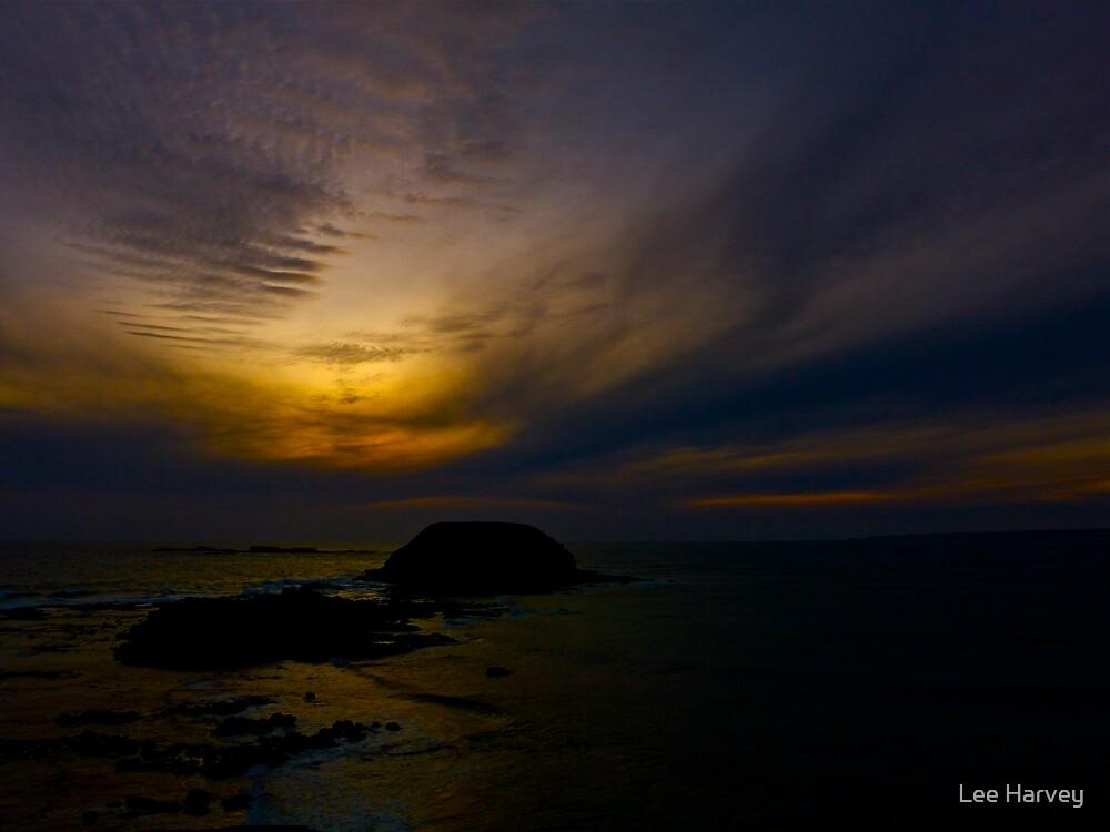Melting Sea Sunset by Lee Harvey