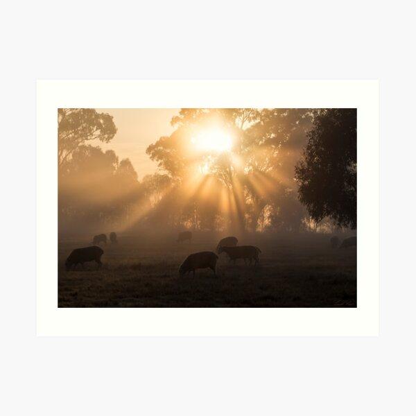 The Year's First Fog Art Print