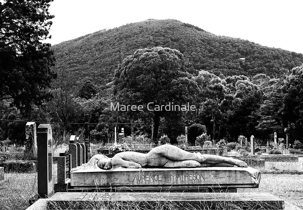 Asleep by Maree Cardinale