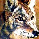 Sir Wolf by deegarra
