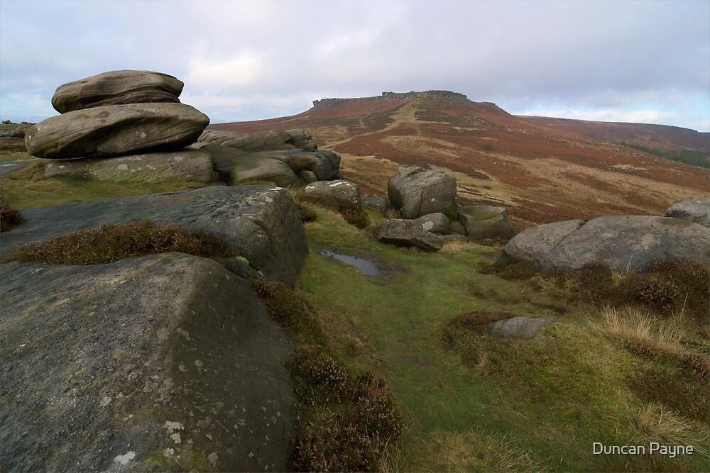 Burbage Moor Towards Higger Tor by Duncan Payne