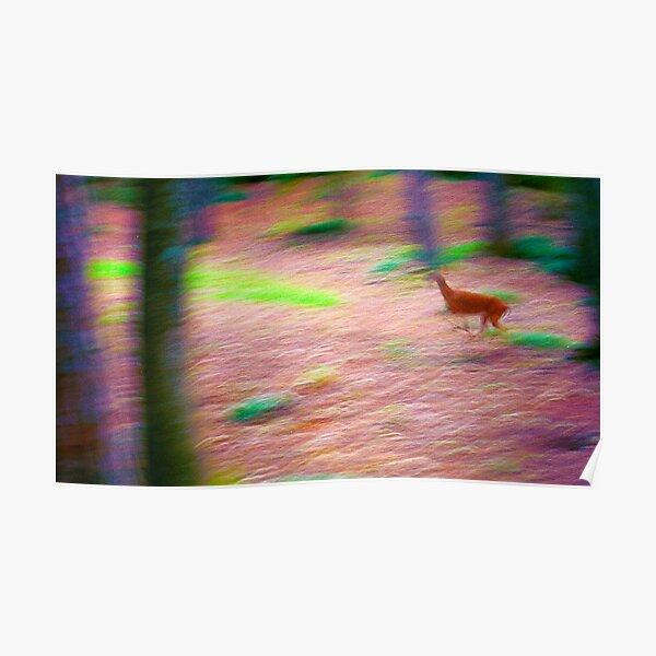 The Deer Running  Poster