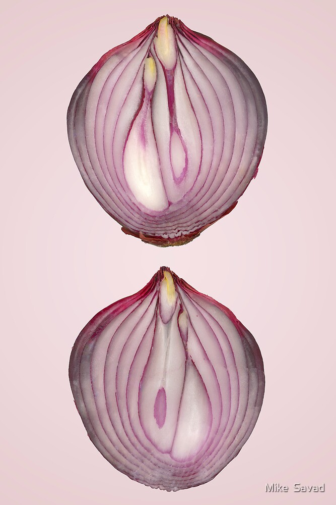 Food - Vegetable - Cross section of a Red Onion by Michael Savad