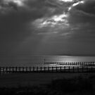 Reaching for the sea by moor2sea