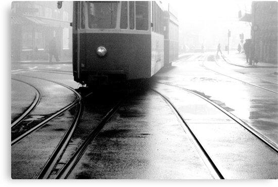 1986 - misty morning by moyo