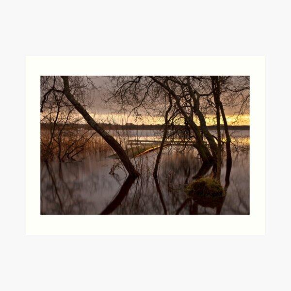 Light On The Loch Art Print