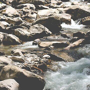 Rocky Ravine de AmberRoques
