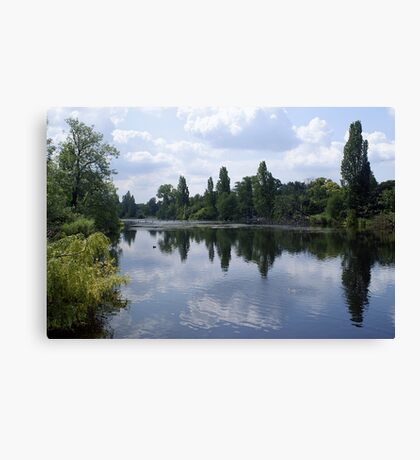 Serpentine River Canvas Print