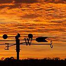 Sun rising in the east by Mick Kupresanin