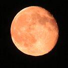 My Husband' steady Moon shot by Brenda Dahl