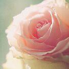 lovely. by cmpotts