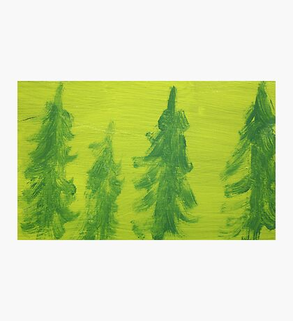 Impression Green Land Pine Trees Photographic Print