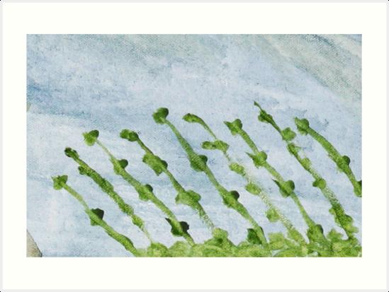Impression Shore Seaweeds by Thomas Murphy